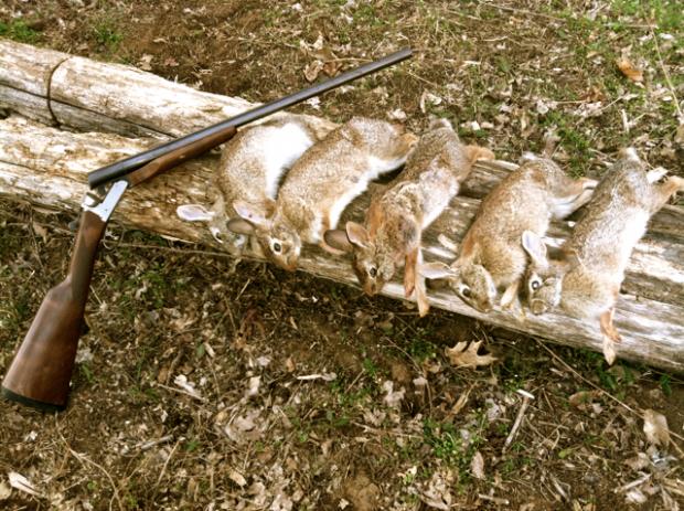Best Rabbit Gun - Granny Gun | Our Southern RootsOur